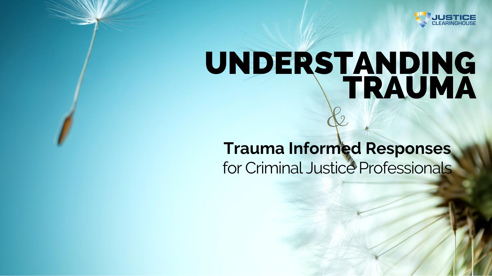 Understanding Trauma Banner