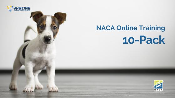 NACA Online Training 10-Pack