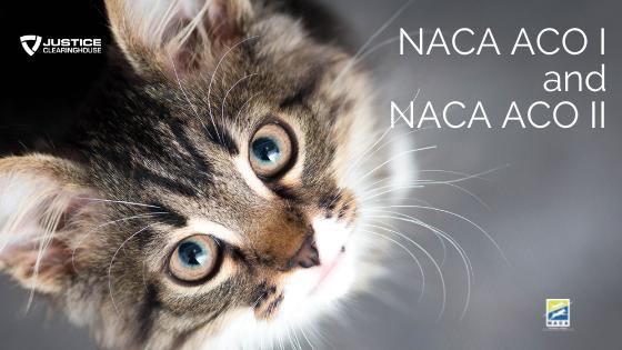 NACA ACO I and II with 1 Year NACA Membership